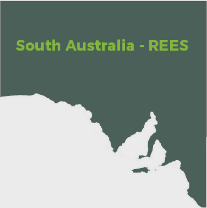 South Australia - Retailer Energy Efficiency Scheme (REES)