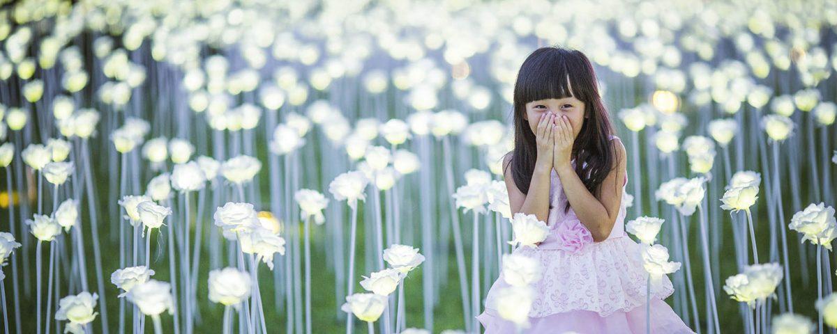 light-rose-garden-chengdu-by-allrightsreserved-1
